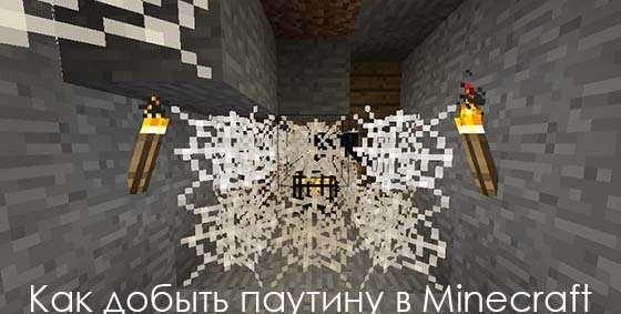 pautina-v-minecraft-logo