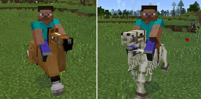 horses-riding