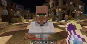 villager-companion-4