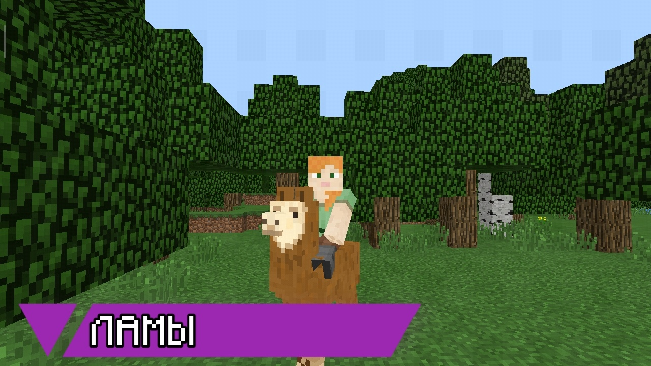 Лама в Minecraft Pocket Edition 1.1.5