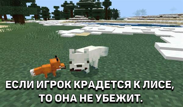 Белая и Рыжая Лисы в Minecraft 1.13.0.2