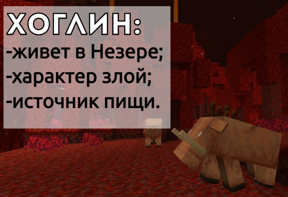 Новый моб: Хоглин в Minecraft PE 1.16.0