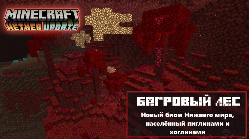 Багровый лес в Майнкрафт 1.16.0