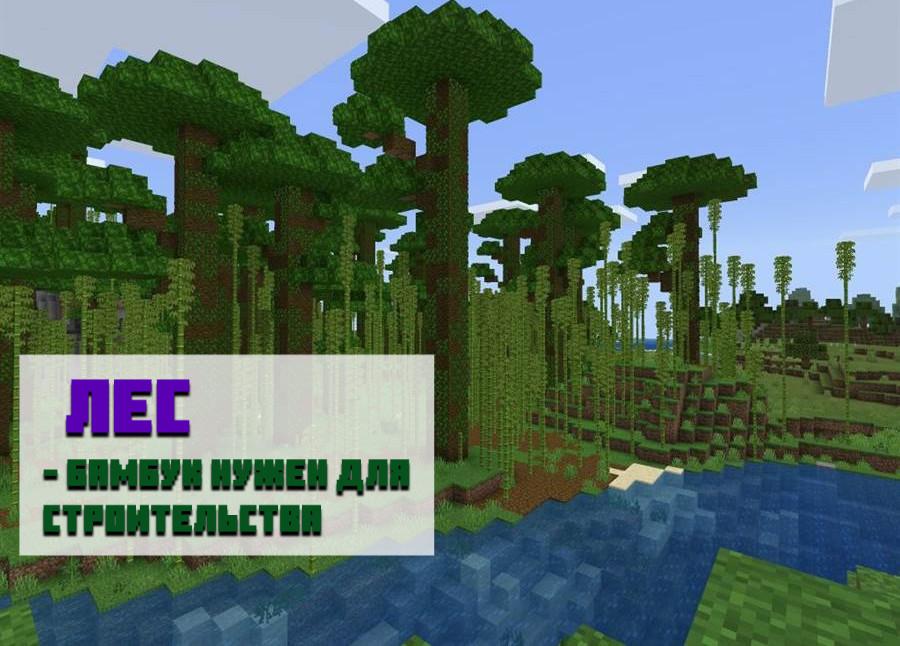 Сид на бамбуковый лес для Майнкрафт ПЕ