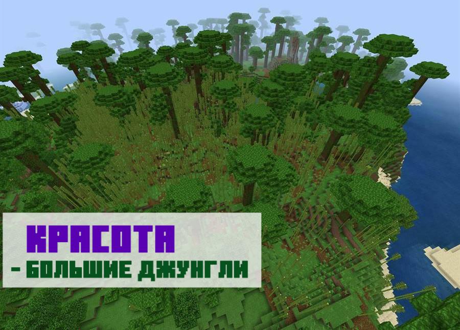 Сид на джунгли и бамбуковый лес для Майнкрафт ПЕ