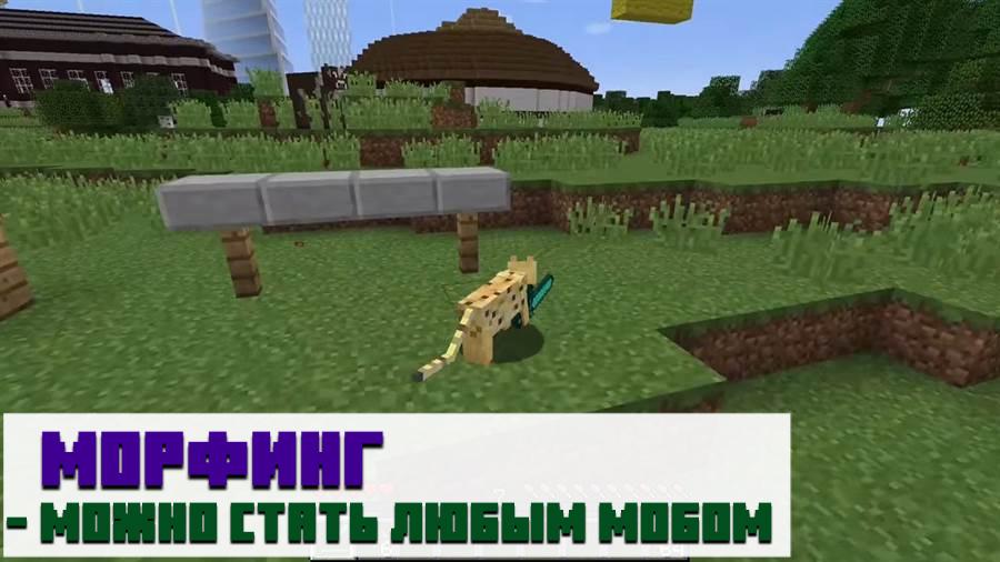 Мод metamorph на Minecraft PE