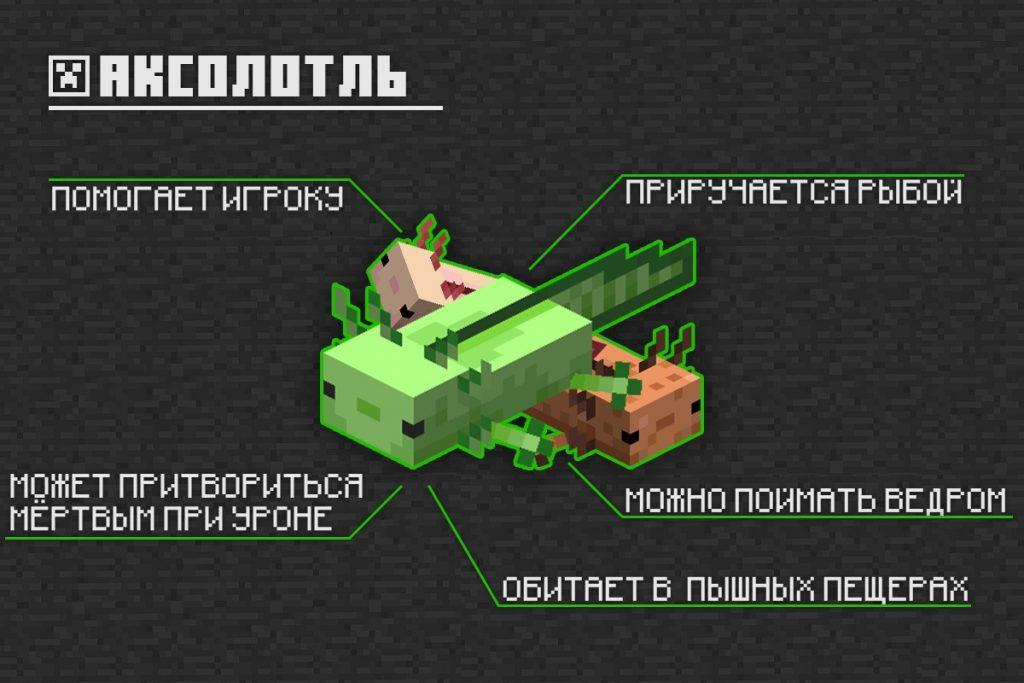 Аксолотль в Minecraft PE 1.16.210.60