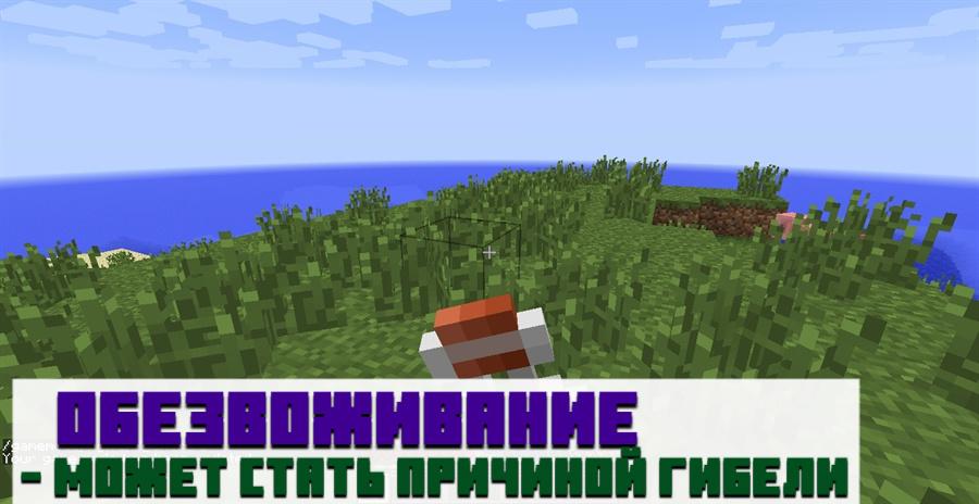 Вода в Minecraft PE
