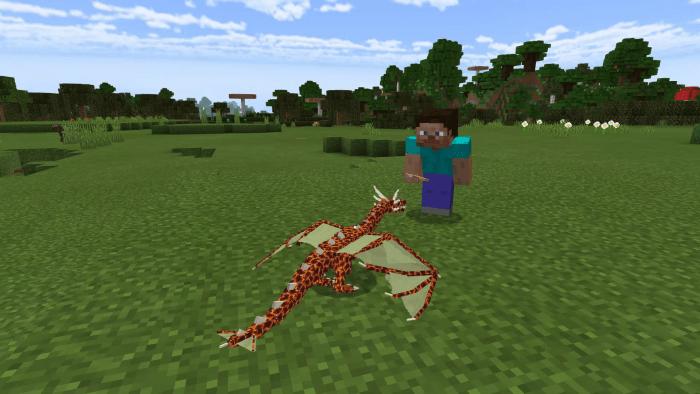 Игрок кормит дракона