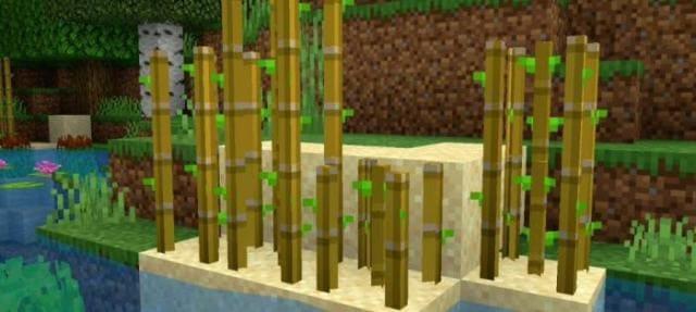 Как выглядят растения в воде 2