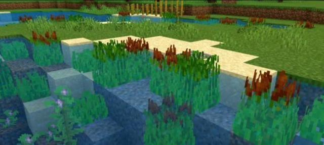 Как выглядят растения в воде 3